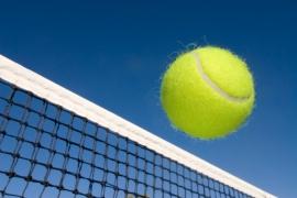 Tennis Fees